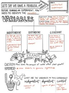 Types of Variables Sketchnotes by Creativity Meets Cognition Science Fair Projects, Science Experiments Kids, Science Lessons, Teaching Science, Science Activities, Preschool Science, Teaching Reading, Learning, 6th Grade Science