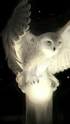 mystical snowy owl