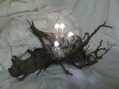 Imagine something like this as a night light for your little one...love everything inspired by nature!