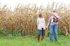 feather + light photography   family lifestyle photography   family photo session   corn field