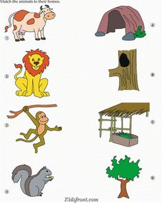 Kids Activity -Match Animals(Lion, Cow,Monkey, Squirrel) with their Home., Black & white Picture