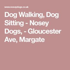 Dog Walking, Dog Sitting - Nosey Dogs, - Gloucester Ave, Margate