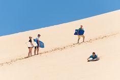 Bus Tours to Cape Reinga & Ninety Mile Beach from Kaitaia. a scenic trip to the top of the North Island. Toboggan giant sand dunes at Te Paki, buried kauri tree's Kauri Tree, What Is Like, Dune, Lighthouse, New Zealand, How To Memorize Things, Spiritual, Join, Tours