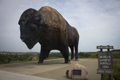 If you're an outdoors enthusiast, Jamestown, ND, is perfect. Home to the world's largest buffalo monument, the town also boasts disc golf courses, hiking trails, fishing holes, go-kart racing, 300 species of birds (really!), and the rare white buffalo of the herd owned by the National Buffalo Museum.