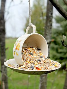 Attract birds to your garden with this beautiful teacup bird feeder