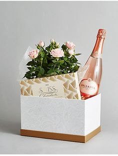 Sparkling Wine, Rose Plant & Swiss Chocolates Hamper - This patterned gift box with gold lid features a beautiful soft pink Rose, large box of chocolates and a bottle of sparkling rosé wine. A luxurious gift for a special occasion. Colours may vary slightly throughout the season. 1 x Pale Pink Rose Plant 1 x Sparkling Rose Wine 75cl 1 x Assorted Swiss Chocolates 145g Packaging Detail: Comes in a large hamper box #affiliate #gift