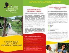 Case Study Brochure by LeafLove on Envato Elements