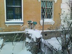 Фотографии Алтая (Photo Altai)   Города и сёла (Towns and villages): Бийск. ''Охрана у дома''. 2. (Biisk. Protection''a...
