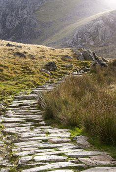 stone path, snowdonia, wales #nature #photography