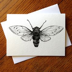Cicadas are one of my absolute favorite winged bugs. This card is a very intricate design of the cicada insect that will fit any occasion, especially to use for that special someone in your life. It is a print of my original illustration and is perfect for that nature-loving friend or anyone who loves winged bugs. Each print will come with my signature and title on the back. This listing is for one card. The card is blank inside for you to write your own message to send to a friend as a…