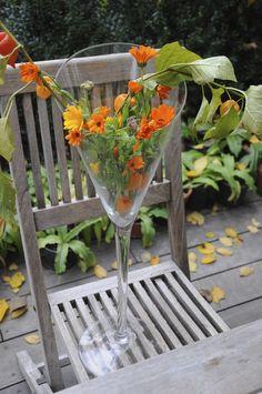 cz: Autumn in bright orange Bright, Autumn, Orange, Garden, Flowers, Garten, Fall, Florals, Gardens