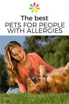 Having a pet allergy doesn't mean you have give up living with pets. Learn about allergy-friendly pets and how to minimize pet allergens in your home. Dust Allergy, Allergy Asthma, Natural Cures, Natural Health, Funny Animal Pictures, Funny Animals, Pet Allergies, Tier Fotos, Pet Beds