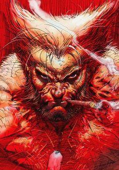 Image result for wolverine marvel artwork