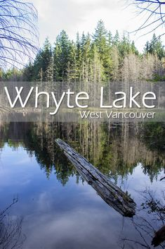 Whyte Lake Hike in West Vancouver All About Canada, Fraser Valley, Small Lake, Travel Oklahoma, Canadian Rockies, Best Hikes, New York Travel, Canada Travel, Thailand Travel