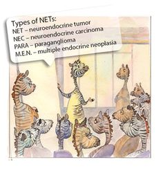 The many ways of NET. There are a number of different types of NETs and they all have a slightly different way of presenting themselves, both in terms of symptoms and how they look under a microscope. http://netcancerday.org/learn-more/what-is-net-cancer/what-are-the-different-types-of-net-cancer