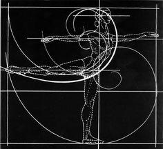 the golden ratio - like my Interrelated Arts final project, but cooler Fibonacci Golden Ratio, 7 Arts, Sacred Geometry Art, Geometry Tattoo, Divine Proportion, Human Body Art, Math Art, Geometric Art, Graphic Design