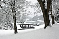 snow. I just want to walk across the bridge. It looks awesome!