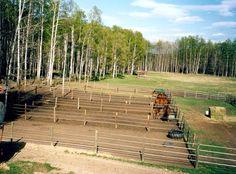 Horse pens, runs Horse Paddock, Horse Stables, Horse Farms, Horse Shelter, Horse Rescue, Horse Pens, Backyard Barn, Farm Shed, Horse Corral
