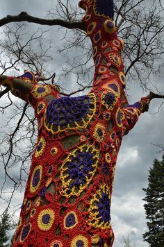 Knit Clothing on Tree Photo By Michael Kappel
