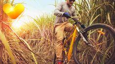 Aktiiviloma kuten haluat! | Aktiivilomat | Tjäreborg  #munloma Bicycle, Motorcycle, Sport, Vehicles, Bike, Deporte, Bicycle Kick, Bicycles, Motorcycles
