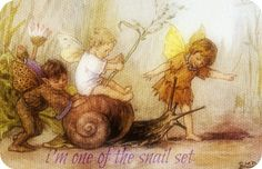 Cicely Mary Barker - Other Miscellaneous Works - Elves and Fairies Postcards - A Joy Ride Painting Cicely Mary Barker, Elves And Fairies, Real Fairies, Fairy Pictures, Vintage Fairies, Love Fairy, Beautiful Fairies, Flower Fairies, Fantasy Illustration