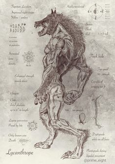 "Lycanthropy is the mythological ability or power of a human being to undergo transformation into a werewolf. A werewolf (from Old English: wer, ""man""), man-wolf, or lycanthrope (Greek: λυκάνθρωπος,. Werewolf Art, Werewolf Tattoo, Werewolf Drawings, Werewolf Mythology, Werewolf Hunter, Alien Drawings, Arte Obscura, Vampires And Werewolves, Wow Art"