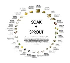 sprouting chart