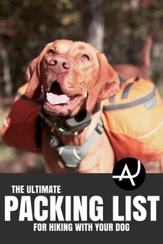 The Complete Dog Hiking Gear List