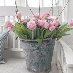 Dutch Tulip, Pink Tulips, Flower Arrangements, Glass Vase, Planter Pots, Cottage, Home Decor, Family Life, Flowers