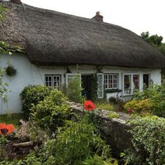 Irish Cottage <3