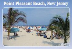 POINT PLEASANT BEACH NJ BEACH VIEW WITH PALM TREES  HARD2FIND POSTCARD