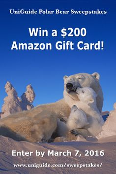 Hello! Here's a chance to win a $200 Amazon gift card in the UniGuide Polar Bear #Sweepstakes Ends 3/7.