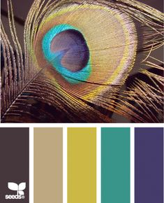 Peacock hues are luxurious, rich, and absolutely gorgeous for fall weddings.