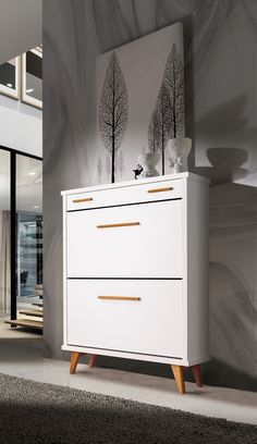 Modern Design Shoe Storage Cabinet in White and Wood finish