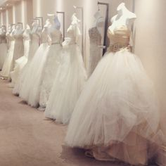 Memphis Wedding Vendors On Pinterest Memphis Wedding Vendors And Spotlight