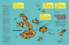 Map of Galapagos Islands off Ecuador  #southamerica #homeschool