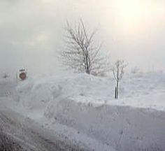 A Peaceful picture Blizzard of 1977 Buffalo NY. Where and when Mikey born. Winter Storm, Winter Fun, Winter White, Niagara Region, Buffalo New York, Winter Scenery, Snow Scenes, Winter Beauty, Winter Pictures