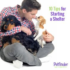 Have you wondered what it takes to open your own animal shelter? Click ahead for our top 10 tips to start an animal shelter or rescue group!