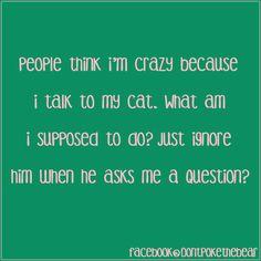 I've always talked to my kitties.