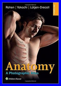 28 best anatomia images on pinterest human anatomy human body and anatomy a photographic atlas color atlas of anatomy a photographic study of the human body paperback import 4 feb 2015 fandeluxe Gallery