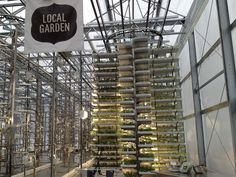 Check+Out+The+World's+Largest+Indoor+Vertical+Farm+Capable+Of+Producing+2+Million+Pounds+Of+Food Check Out The World's Largest Indoor Vertical Farm Capable Of Producing 2 Million Pounds Of Food