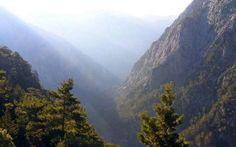 Προ των πυλών βρίσκονται 4 Ντοκιμαντέρ για το φυσικό και πολιτιστικό περιβάλλον του Πάρνωνα