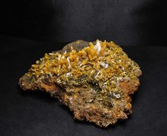 Wulfenite - Elongated Crystals from San Juan Poniente, Mapimi Krystal, Minerals, College, King, Gemstones, Food, San Juan, University, Essen