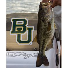 Did you know #Baylor has a Bass Fishing Club? They fish all over the state of Texas, and often travel out of state for some of our tournaments. (Via @baylorbassfishing on Instagram)