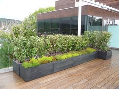 Movable Modular Planters and Green Walls from Maximize Design | Inhabitat - Sustainable Design Innovation, Eco Architecture, Green Building