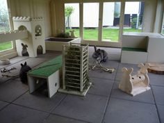 inside rabbit house Rabbit Shed, Rabbit Run, Rabbit Toys, Pet Rabbit, Indoor Rabbit House, House Rabbit, Bunny Cages, Rabbit Cages, Rabbit Habitat
