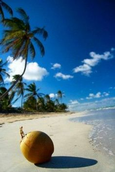 The Caribbean Islands   Top 10 Famous Islands for Vacation