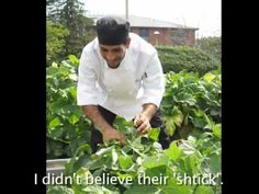 The Truth About Bon Appetit's Farm to Fork Program