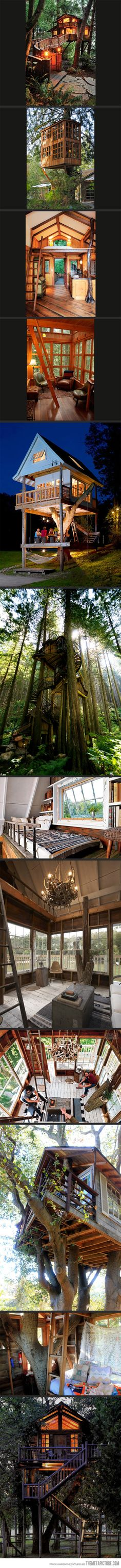 Dream Tree Houses…