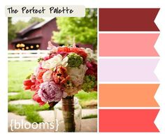 Coral Wedding #Colour #ideas #palette for weddings ... #Wedding #Ideas for brides, grooms, parents & planners ... https://itunes.apple.com/us/app/the-gold-wedding-planner/id498112599?ls=1=8 plus how to organise an entire wedding, with the money you have available. ♥ The Gold Wedding Planner iPhone #App ♥